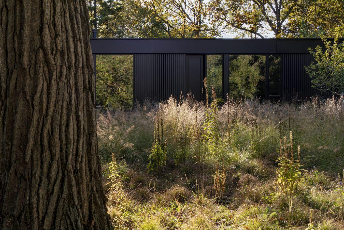 Ravine House Wheeler Kearns Architects